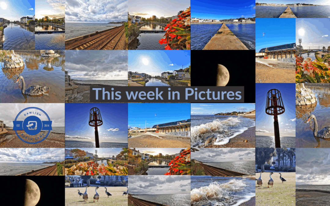 This week in Pictures